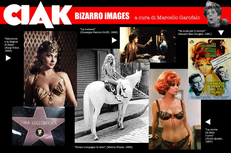 Strani Compagni Di Letto.Lollo Forever Il Lato Bizarro Di Gina Lollobrigida Ciak Magazine